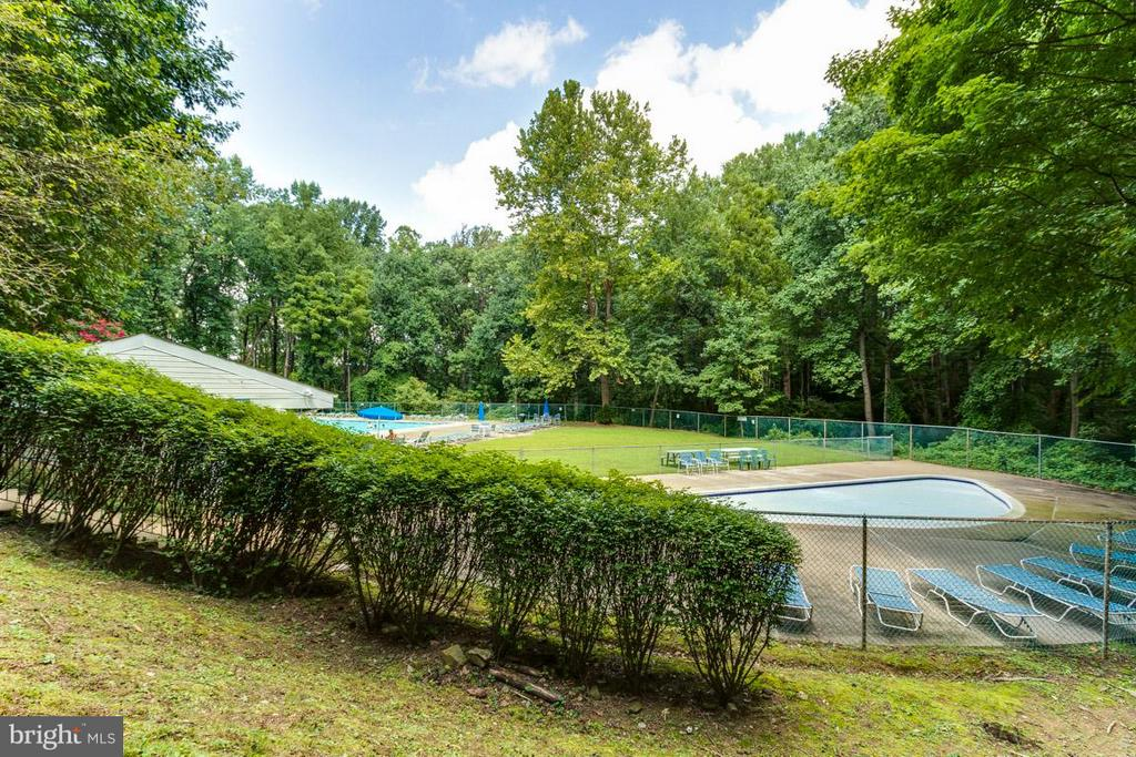Community POOL - 4379 AMERICANA DR #10, ANNANDALE