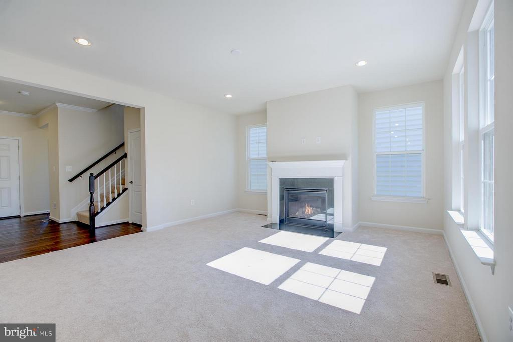 9ft. Ceilings, Gas Fireplace, Great Lighting! - 336 PEAR BLOSSOM RD, STAFFORD