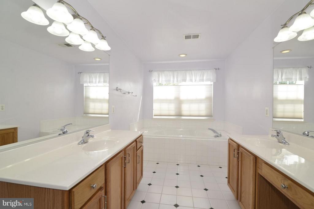 Double vanity - 17233 MAGIC MOUNTAIN DR, ROUND HILL