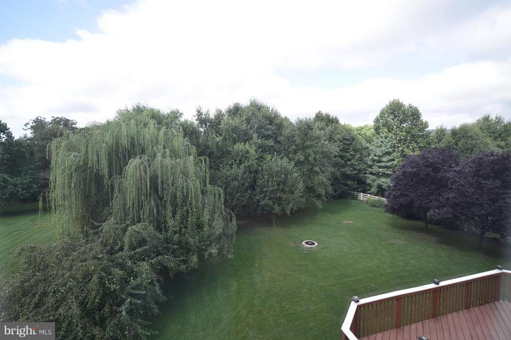 Beautiful lot with weeping willow and fruit trees - 17233 MAGIC MOUNTAIN DR, ROUND HILL