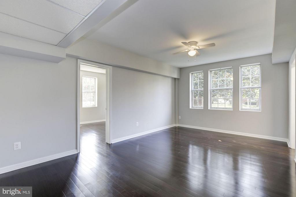 LIVING ROOM FRESHLY PAINTED TOP-TO-BOTTOM! - 1736 QUEENS LN #3-192, ARLINGTON
