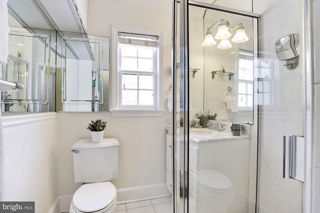 Large Shower, Stone  Counter, Window and Skylight - 2806 DUMBARTON ST NW, WASHINGTON