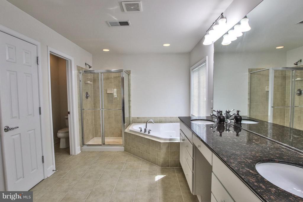 Luxurious master bath - 9406 OLD SETTLE CT, MANASSAS