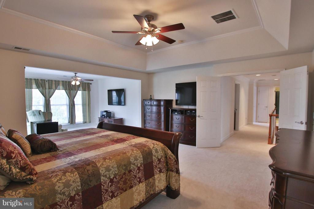 Impressive tray ceiling - 9406 OLD SETTLE CT, MANASSAS