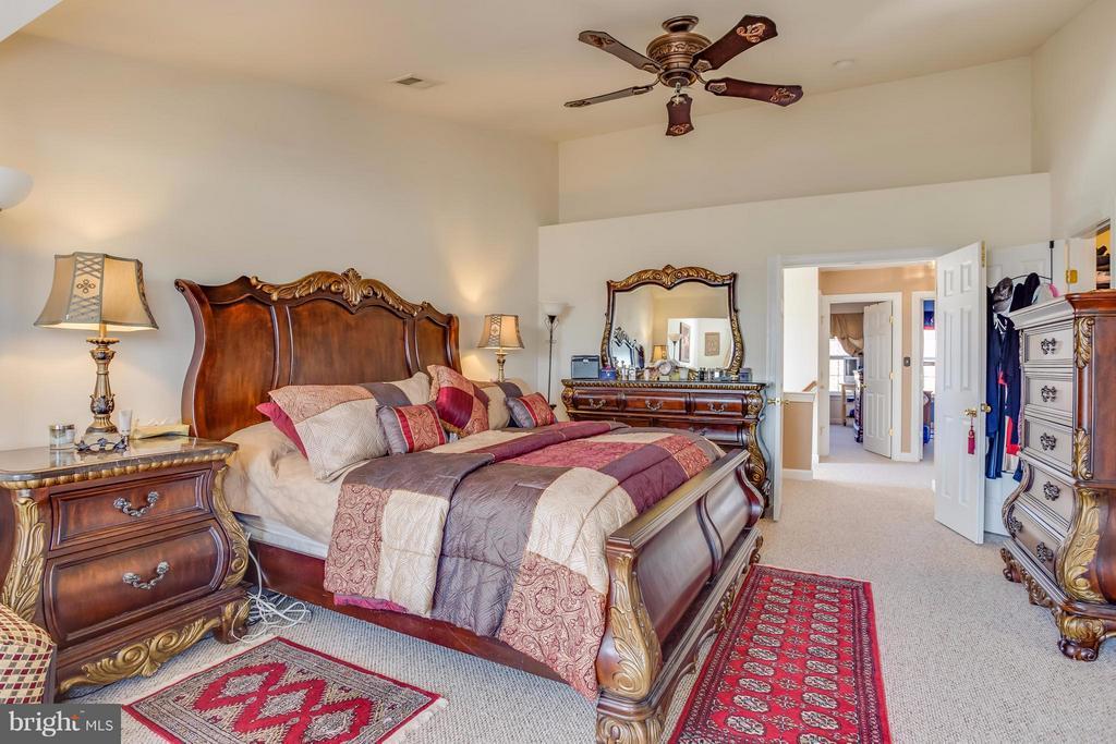 Spacious Master Bedroom - 8199 MCCAULEY WAY, LORTON