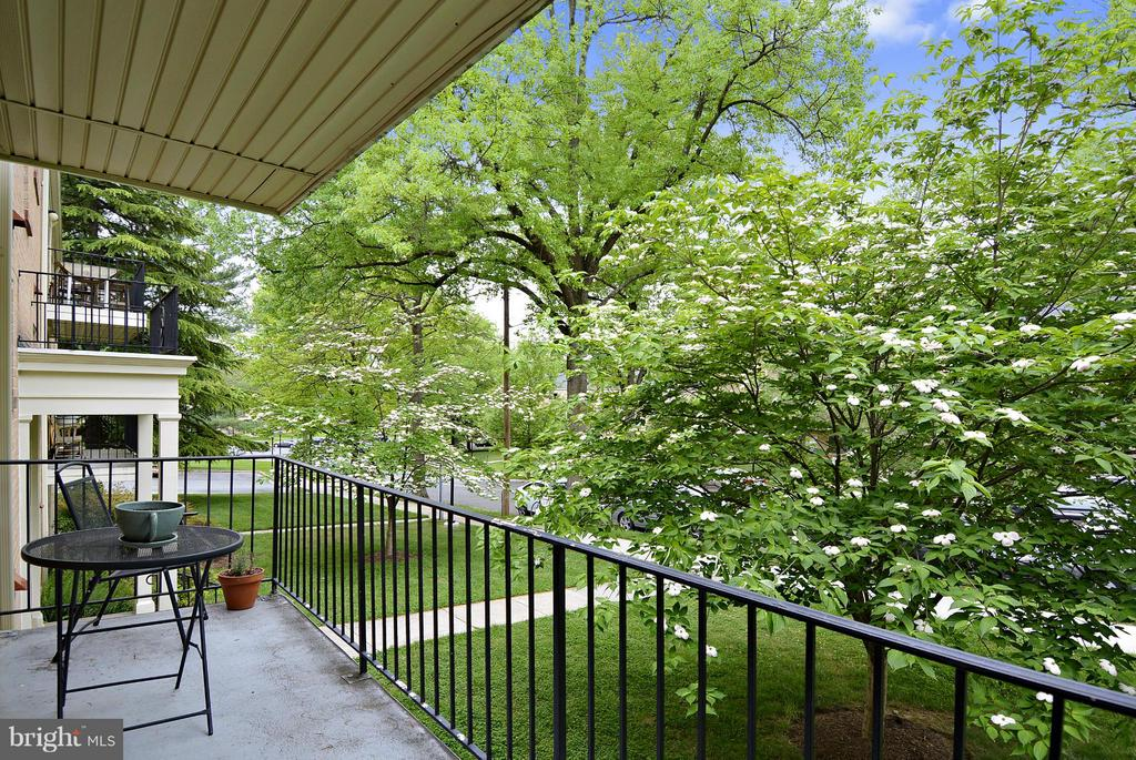 Enjoy the spacious balcony - 10661 MONTROSE AVE #M-101, BETHESDA