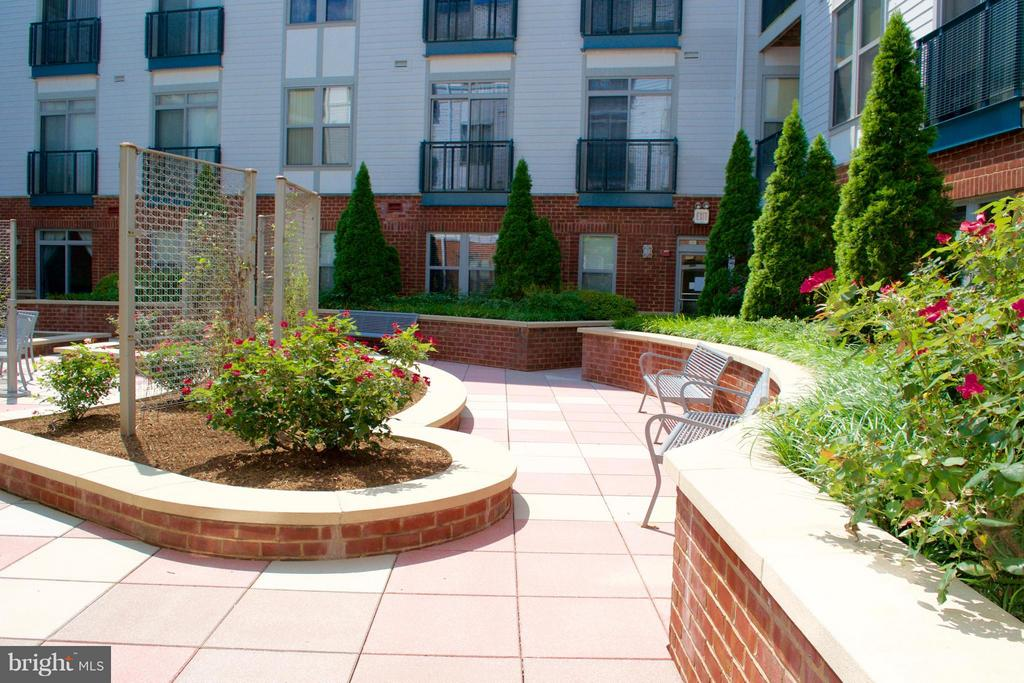 Community Courtyard - 1800 WILSON BLVD #323, ARLINGTON