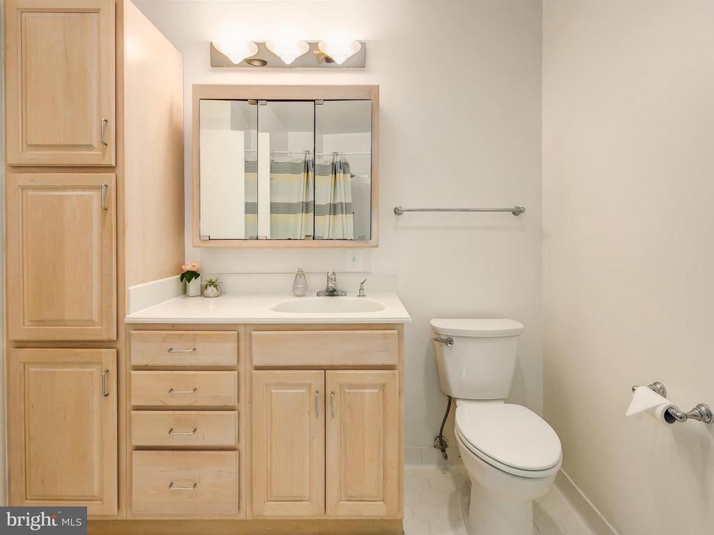 Gorgeous master bath with great storage - 5929 WATERS EDGE LANDING LN, BURKE