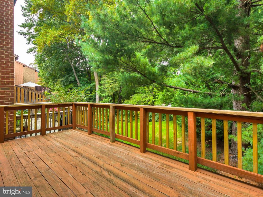 View From the Deck (lake through the trees!) - 5929 WATERS EDGE LANDING LN, BURKE