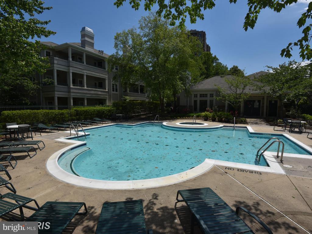 Oak Park Outdoor Swimming Pool - 12024 TALIESIN PL #12, RESTON