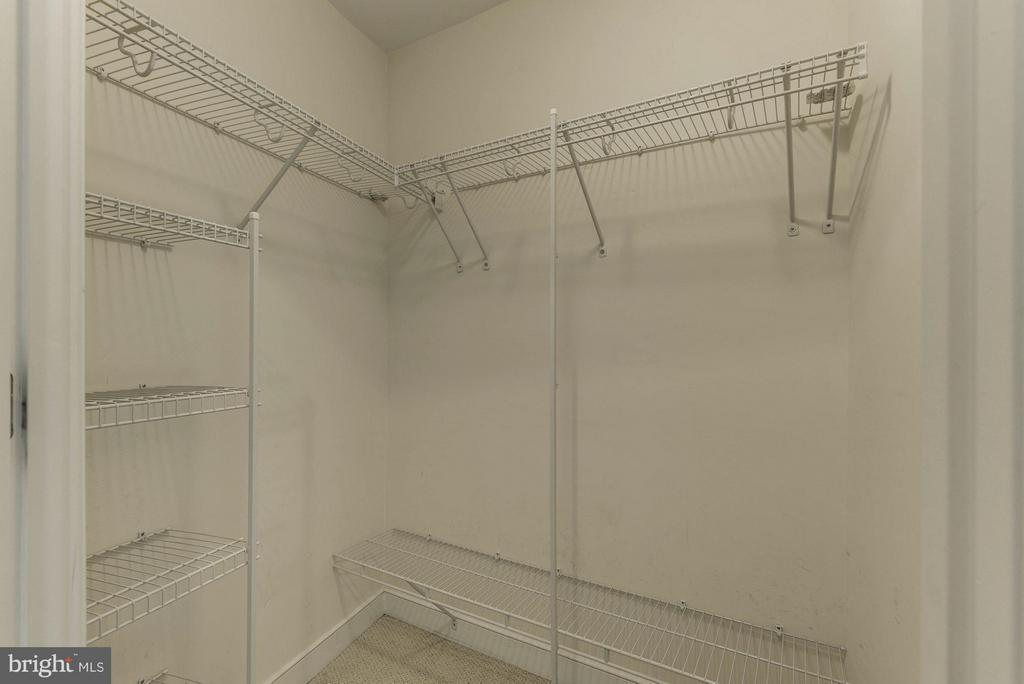 Master Bedroom Walking Closet - 820 POLLARD ST N #311, ARLINGTON