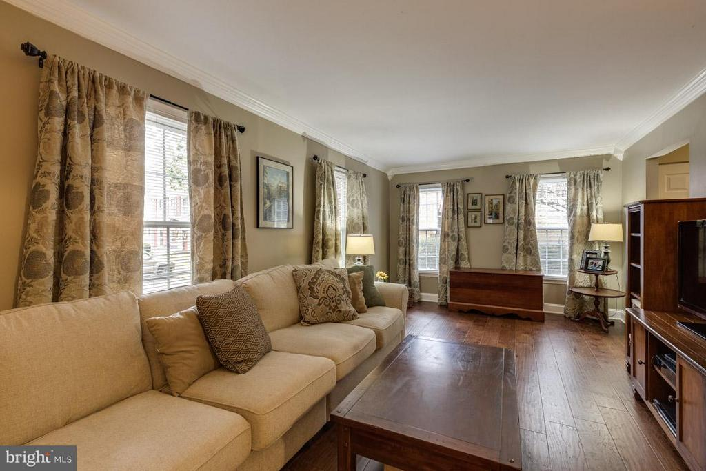 Living Room - warm and cozy - 11841 DUNLOP CT, RESTON