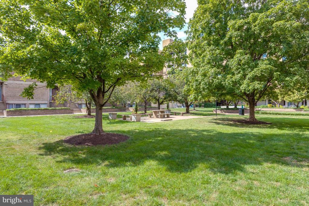 Park like setting outside your gate - 292 M ST SW #292, WASHINGTON