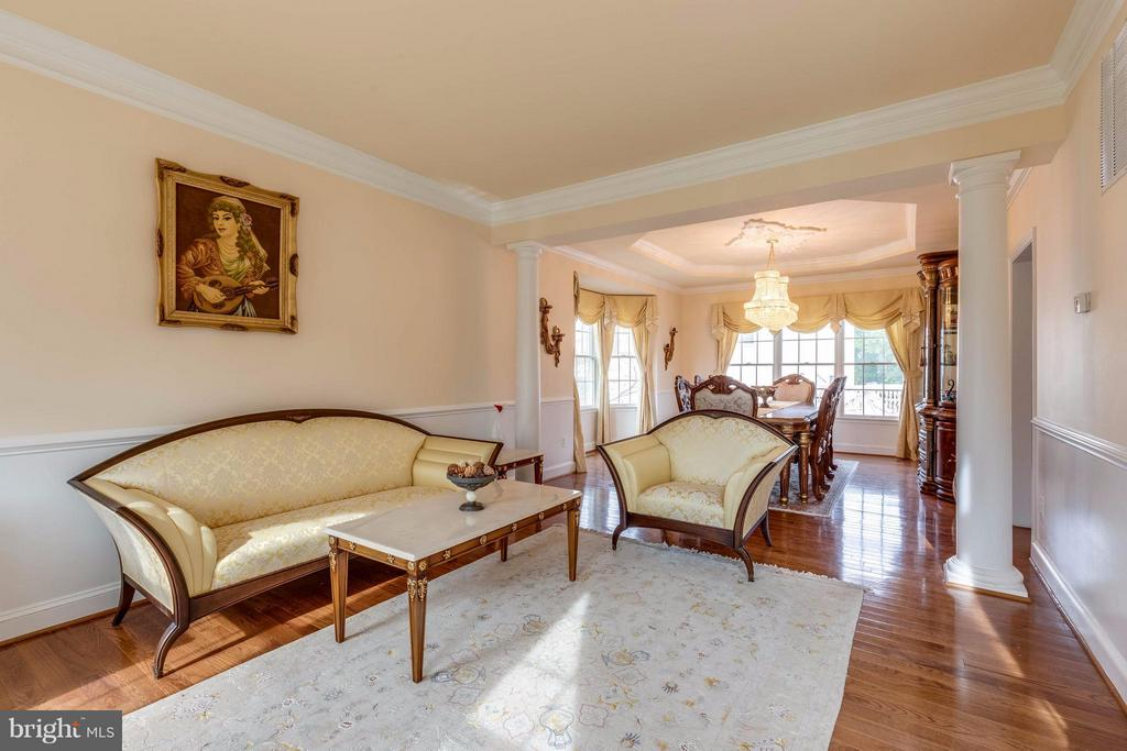 Elegant living room - 22728 DULLES GAP CT, ASHBURN