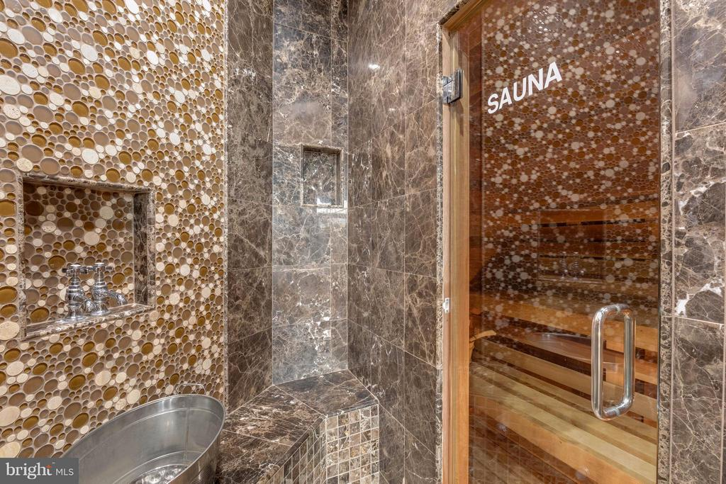 Shower with steam room and sauna - 22728 DULLES GAP CT, ASHBURN