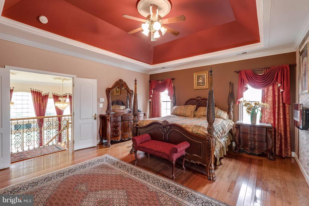 Spaciouis Master Bedroom with fireplace - 22728 DULLES GAP CT, ASHBURN