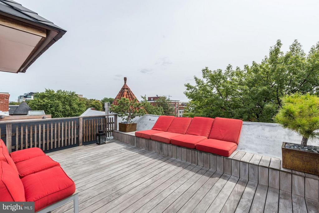 ~Owner's Unit Private Rooftop Deck (2 of 2) - 1105 P ST NW, WASHINGTON