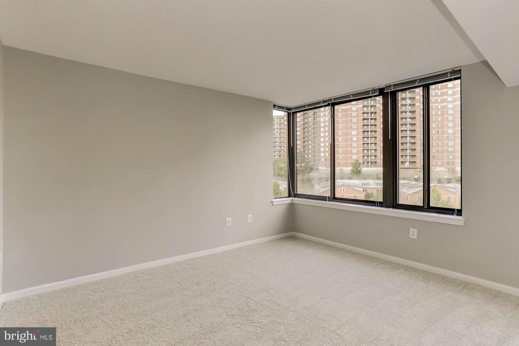 MASTER BEDROOM - WALL OF WINDOWS, VERY BRIGHT! - 2220 FAIRFAX DR #705, ARLINGTON