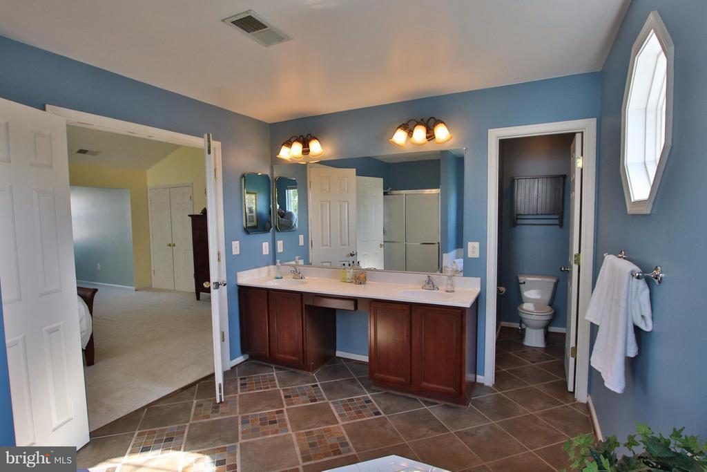 Luxurious bathroom boasts custom tile - 35545 COLLINGTON DR, ROUND HILL