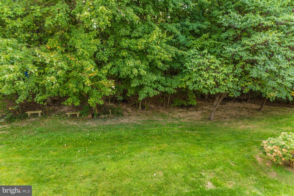 Backs to Mature Trees. - 10 HACKETT CT, POOLESVILLE