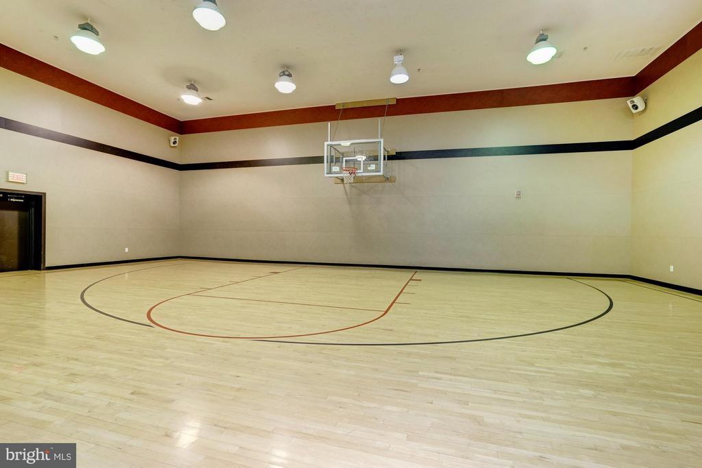 Basketball court - 9486 VIRGINIA CENTER BLVD #107, VIENNA