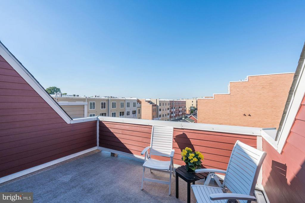 2ND PATIO on ROOFTOP - COMPLETE w/ GAS FIREPLACE! - 622 CUSTIS AVE E, ALEXANDRIA