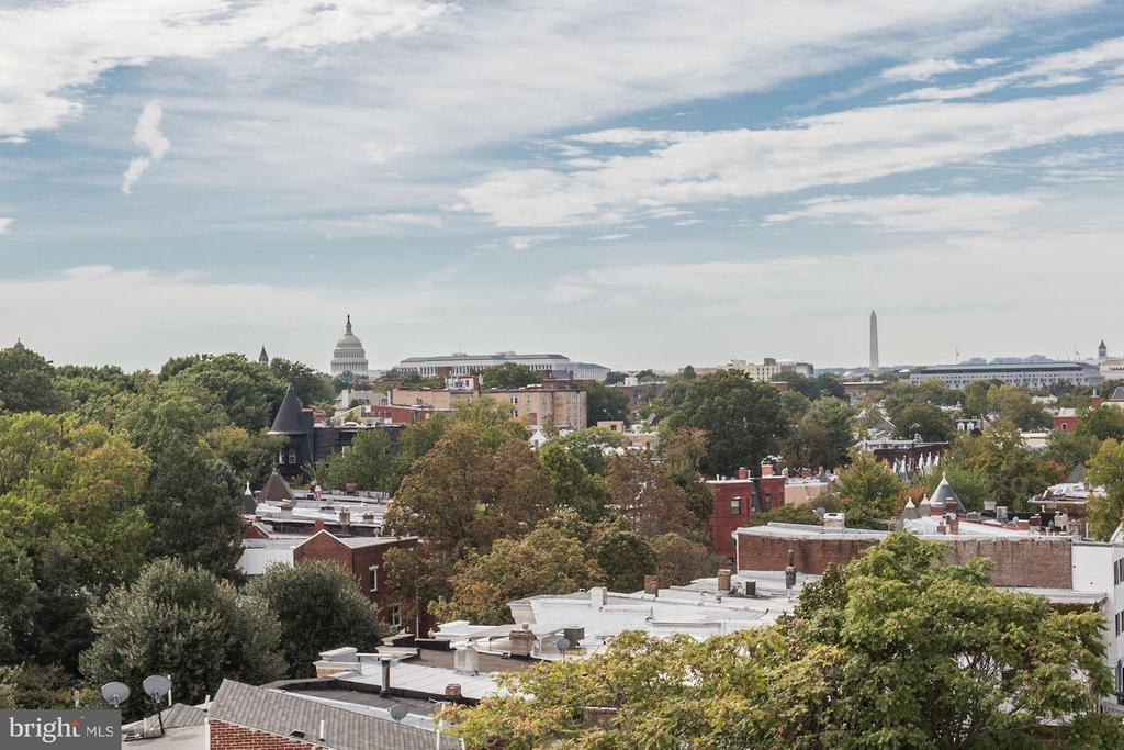 View from roof deck - 1350 MARYLAND AVE NE #406, WASHINGTON