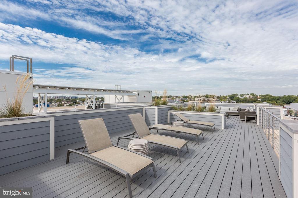Roof deck - 1350 MARYLAND AVE NE #406, WASHINGTON