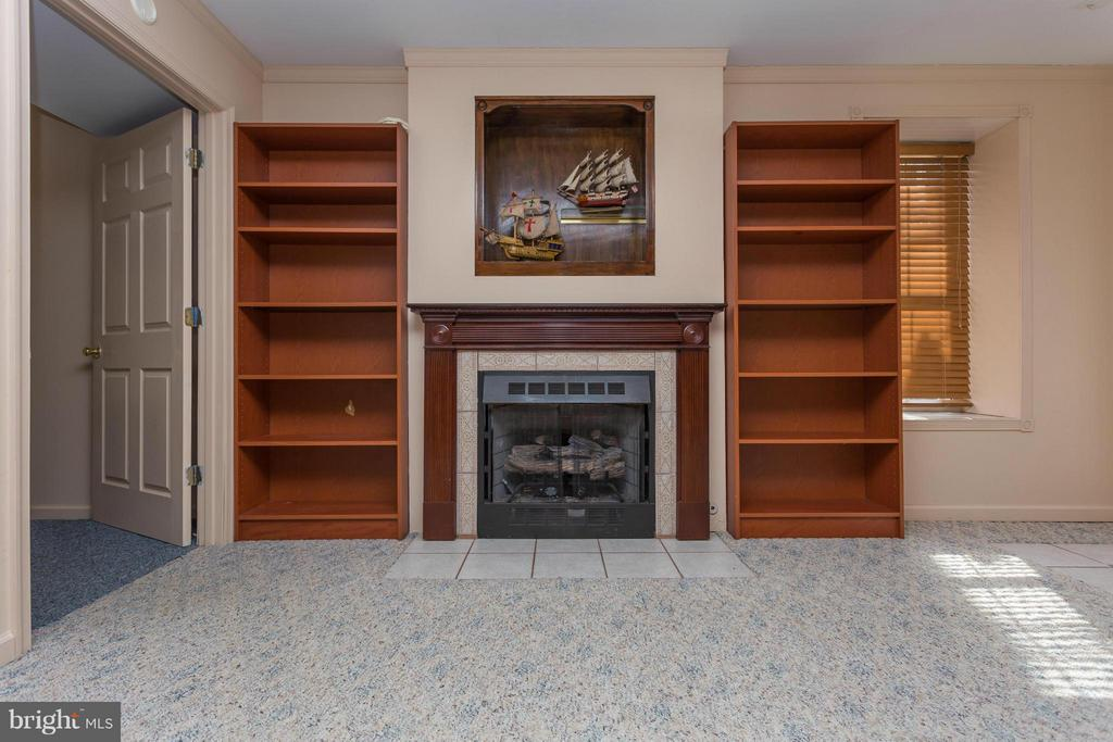 Built in Book cases and gas fireplace - 203 BEACHSIDE CV, LOCUST GROVE