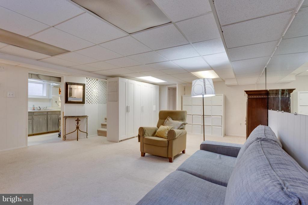 Finished basement with additional storage - 1407 COLUMBUS ST S, ARLINGTON