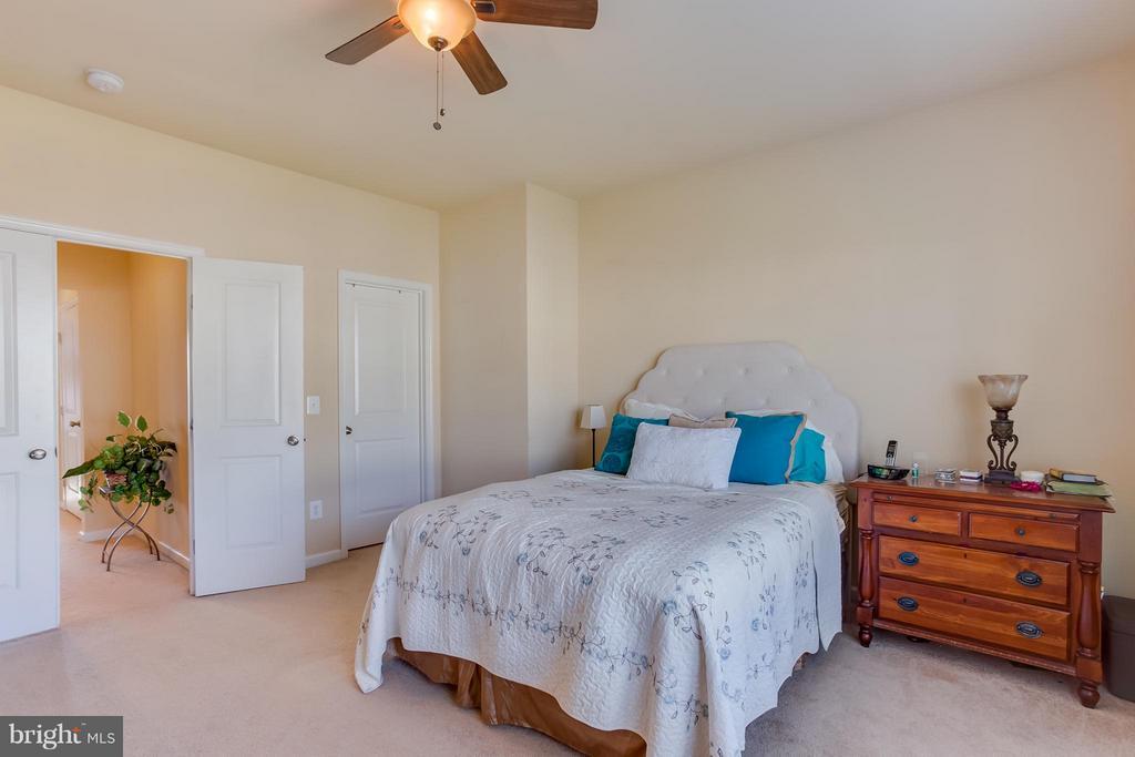 Master Bedroom w/ Walk-In Closet! - 103 SHORT BRANCH RD, STAFFORD
