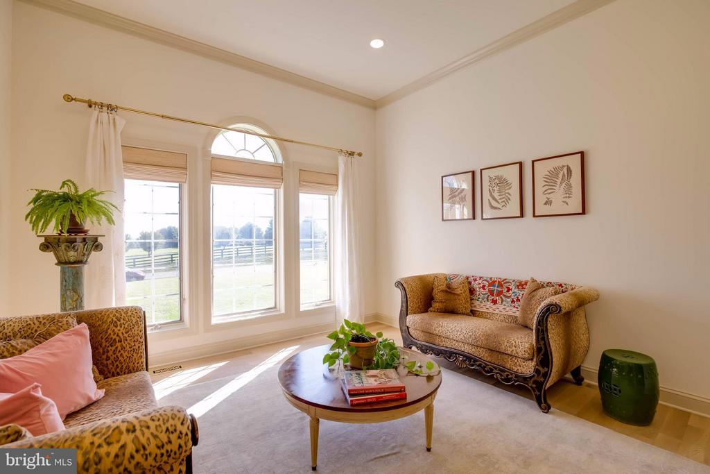 Living Room - 38242 MILLSTONE DR, PURCELLVILLE