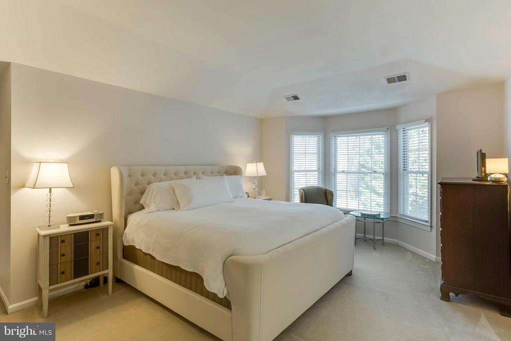 Master bedroom with trey ceiling triple windows - 6 APPLING RD, STAFFORD