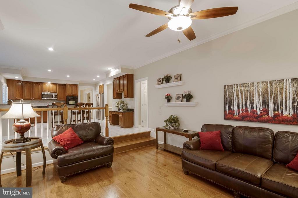 Family Room - 9702 BRAIDED MANE CT, FAIRFAX STATION