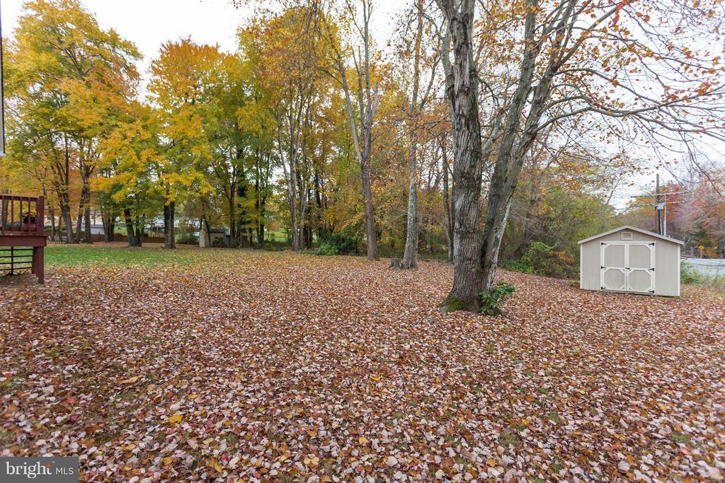 Backyard View & Shed - 107 PINE CT, GORDONSVILLE
