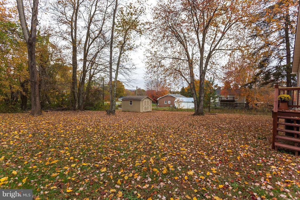 Backyard - 107 PINE CT, GORDONSVILLE