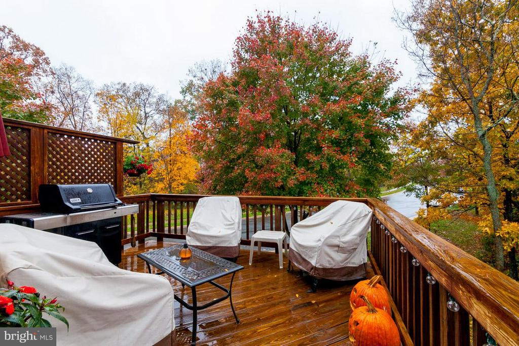 Private Deck Backs to Woods - 43119 HUNTERS GREEN SQ, BROADLANDS