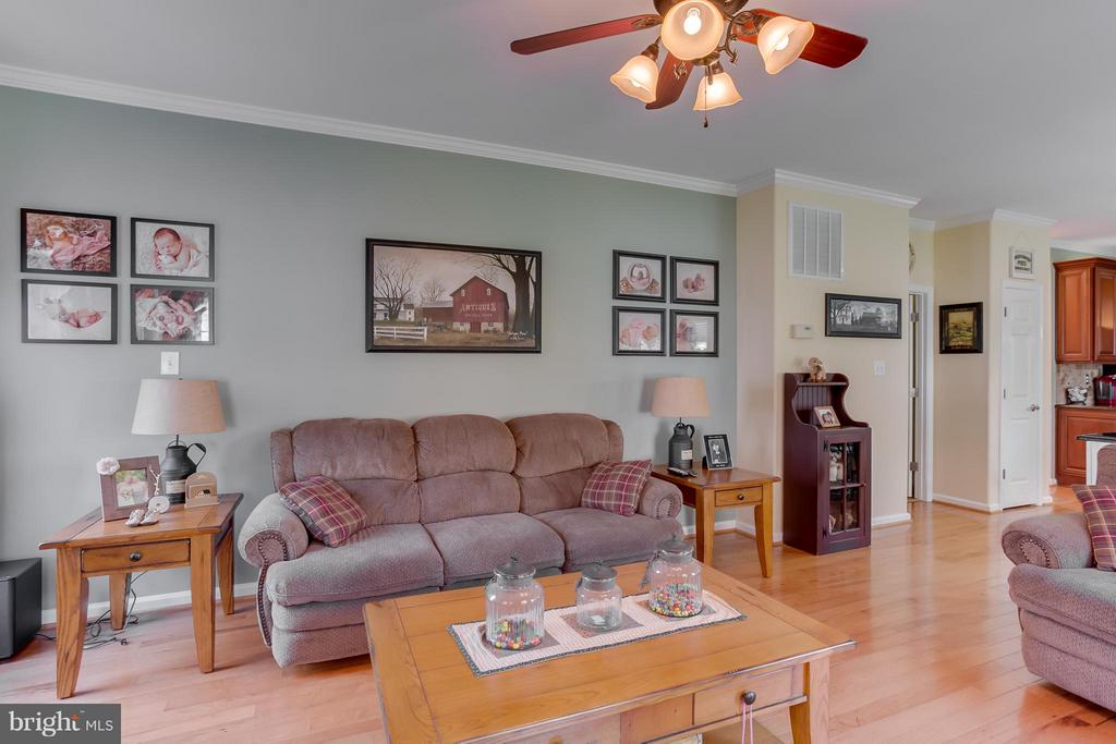 Family Room - 10915 JARVIS CT, FREDERICKSBURG