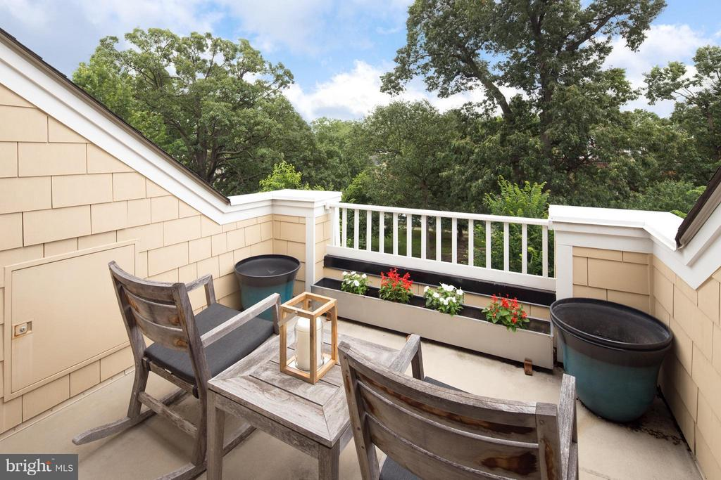 Roof Top Terrace w/ Spectacular Park Views - 2743 11TH ST N, ARLINGTON