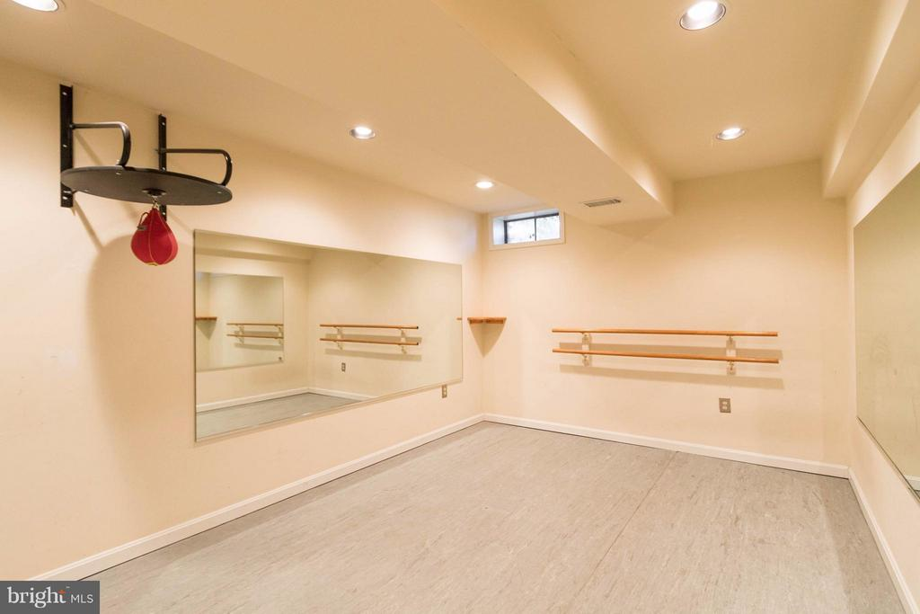 Gym/Workout room in basement. Includes a TV - 15261 HYACINTH PL, DUMFRIES