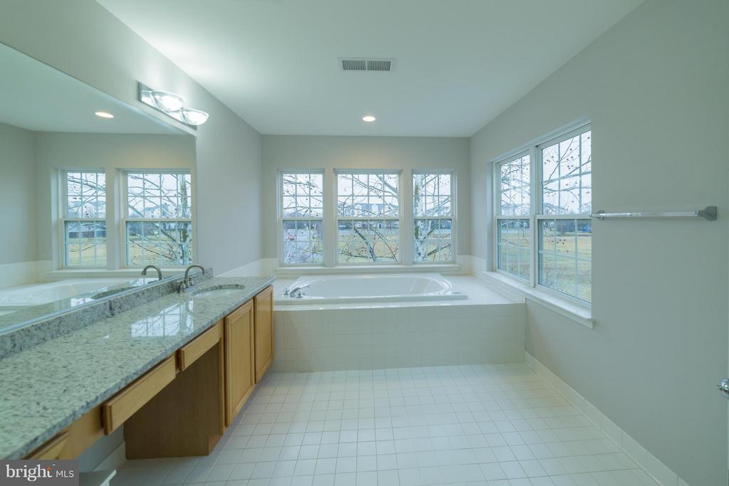 Bath (Master) - 21085 ROTUNDA TER, STERLING