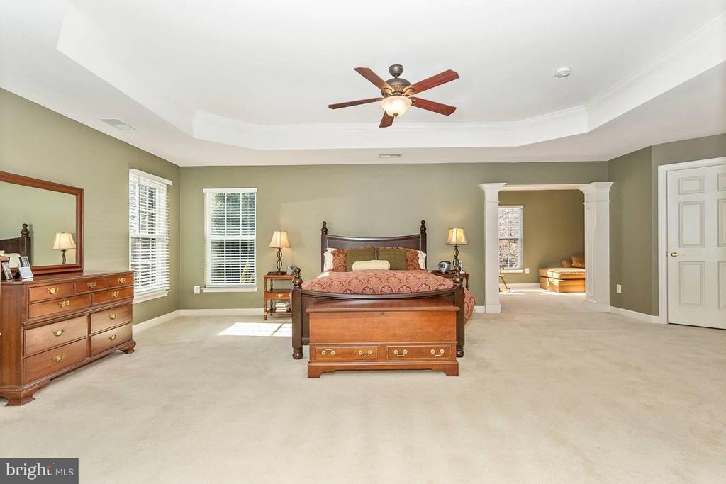 Bedroom (Master) - 10411 WHITEROSE DR, NEW MARKET