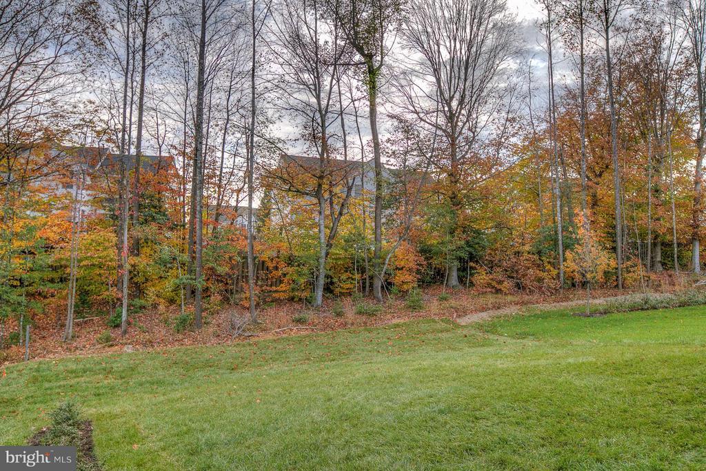 Home Backs To Trees! - 312 PEAR BLOSSOM RD, STAFFORD