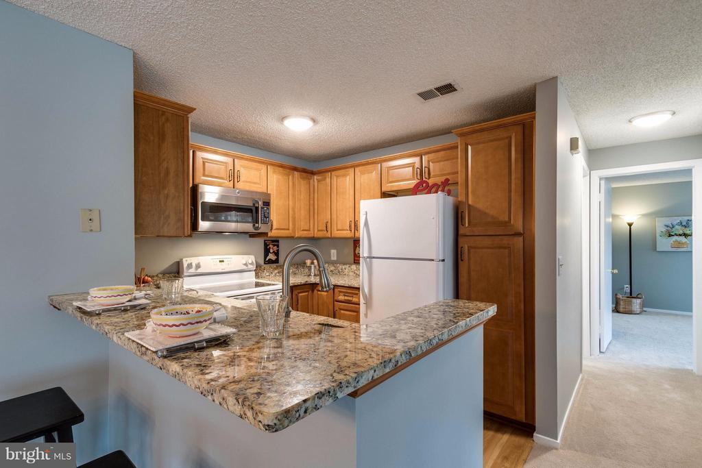 brand new cabinets and laminate floors - 1506C SUMMERCHASE CT #1506 #C, RESTON