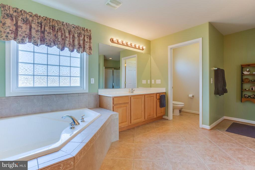 Large Corner Soaker Tub and Private Water Closet - 51 EQUESTRIAN DR, STAFFORD