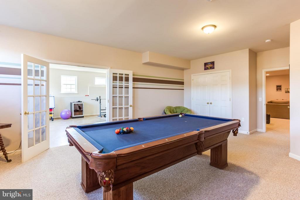 Additional Recreation and Entertainment Space - 51 EQUESTRIAN DR, STAFFORD