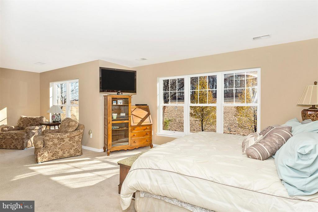 Bedroom (Master) - 11836 VINEYARD PATH, NEW MARKET