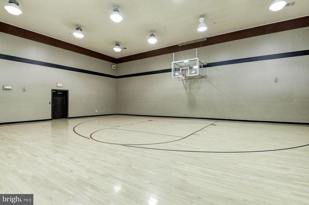 Indoor basketball court - 2765 CENTERBORO DR #466, VIENNA