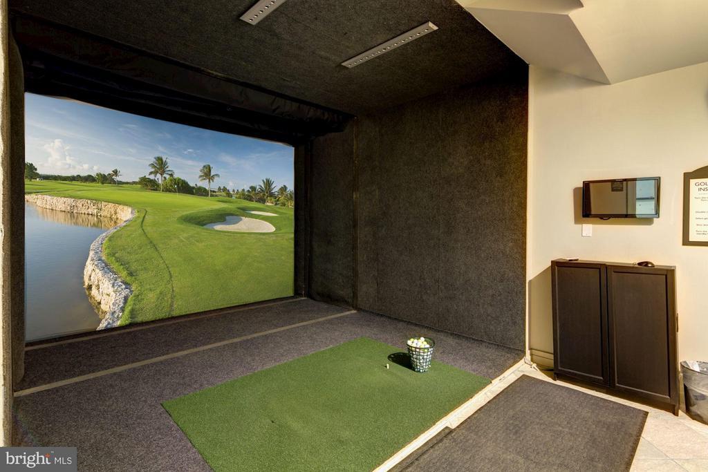 Golf simulator - 2765 CENTERBORO DR #466, VIENNA