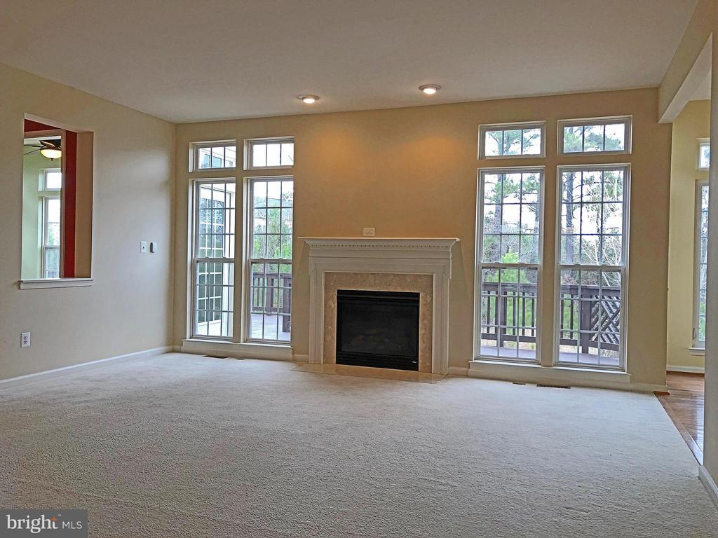 Family Room w/Gas Fireplace - 5405 SILVER MAPLE LN, FREDERICKSBURG